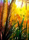 Tropical Heat  by © Linda Callaghan