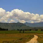 Gathering Clouds by Ann  Palframan