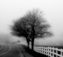 The Fog Rolls In by GGleason