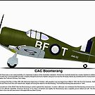 CAC Boomerang Profile by coldwarwarrior