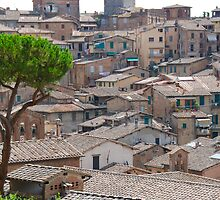 Siena Roofs in summer by 29Breizh33