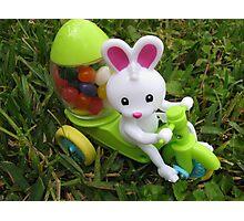Little Bunny Foo Foo Photographic Print
