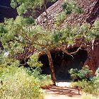 Uluru Cave by Cheryl Parkes