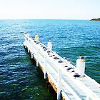 Heading out to sea, Mornington Peninsula by startori