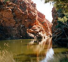 Ellery Creek Big Hole by Cheryl Parkes