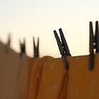 Washing line by Gaspar Avila