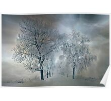 Winter's magic Poster
