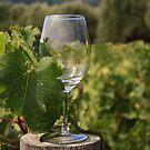 Wine Glass by Susan Leonard