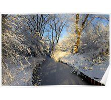 Winter Shine Poster