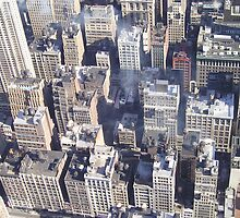 New York Rooftops from the Empire State Building by Jonathan Edwards