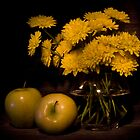 Still Life by rsphoto