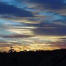 Sunrise - Gippsland, Victoria by BronReid