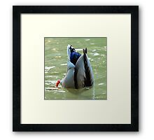 Bottom's Up Framed Print