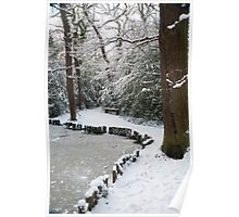 A Winter Walk in the Woodlands: Dulwich Woods, London, UK. Poster