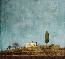 Cyprus hill by paulgrand