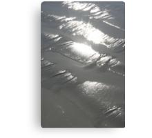 Silver Magic Canvas Print