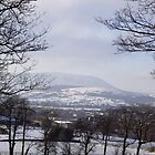 Pendle in the snow by judith murphy