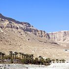 Mountains And Oasis Next To The Dead Sea by Michael Redbourn
