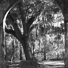Sheldon Church Arch by bendandpeel