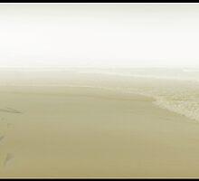 Walking on the beach by Carlos Casamayor