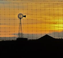 Country Sunset by Susan Russell