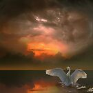 Swan&#x27;s Dream by Igor Zenin