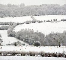 Snowy Pastures by missmoneypenny
