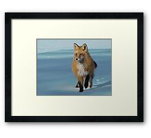 She Runs Framed Print