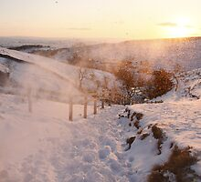 Snow covered Countryside by richardjames