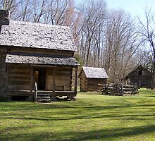 Log House on early Farm - Appalachia Life by Ruth Lambert