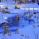 Winter Blues by Len Bomba