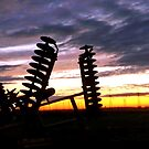 """""""DISK-O"""" SUNSET by Larry Trupp"""
