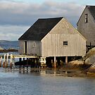 Peggy's Cove - Nova Scotia by Barbara Burkhardt