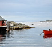 Red Boat - Peggy's Cove Nova Scotia by Barbara Burkhardt