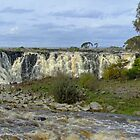 Hopkins Falls near Warrnambool, south west Victoria, Australia by Roger Neal