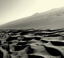 Lonely Dunes. Dubai 2010 by James Hunt