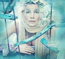 VAN BELLE I by jamari  lior