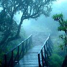 Bridge on Mt Kilimanjaro -- Tanzania  by Gorper