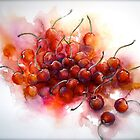 Cherries.. Riper Yet... by  Janis Zroback