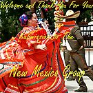 New Mexico Banner by David DeWitt