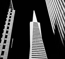 The Needle, San Francisco by Steve Foster