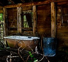 Bath time in the woods by Jeffrey  Sinnock