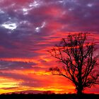 Shades of Sunset by JGetsinger