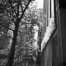 City Street by Paul Moore