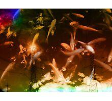 apocalyptic fishnets Photographic Print