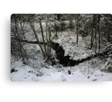 Winter Stream - Glenabo Woods, Cork, Ireland Canvas Print