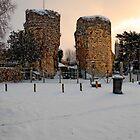 Bigod's Castle, Bungay by Simon Duckworth