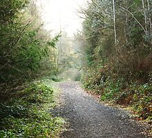Winter Wonderland Walk - Killeagh, Cork, Ireland by CFoley