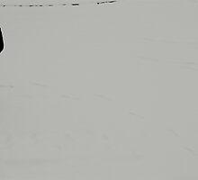 Snow again.. by Tenee Attoh