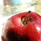 Crisp Apple by Allison Aboud